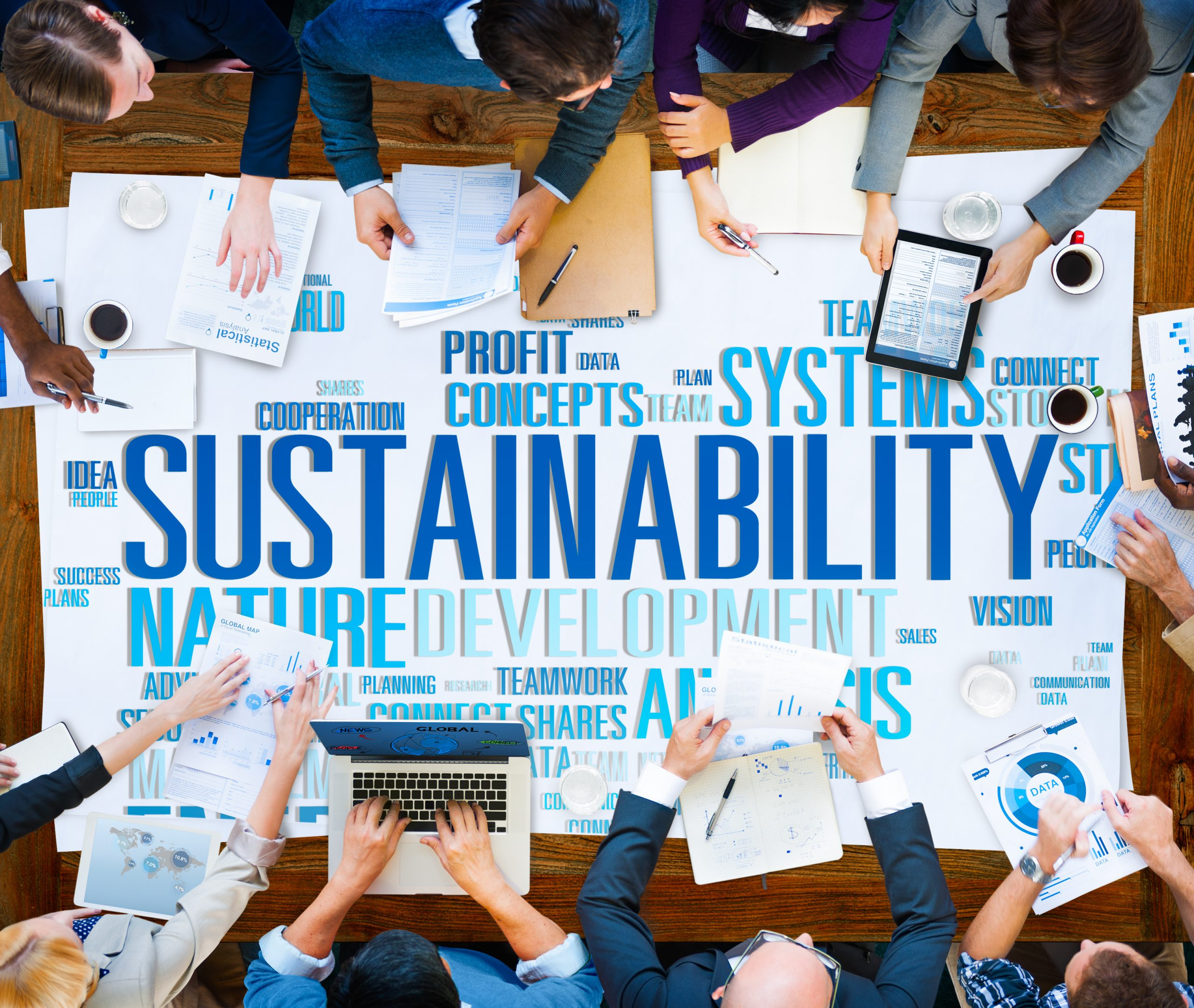 brainstorm sustainable options